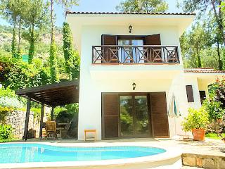 Villa Goodwill, Private Villa 0 Privacy - Gocek vacation rentals