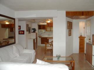 Condo Antonio Loma Del Mar - Puerto Vallarta vacation rentals