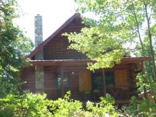 Double Eagle Lodge: Enjoy Nature and get away - Covington vacation rentals