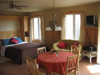 Cosy accommodation surrounded by nature! Two modern, spacious, self-catering chalets - North Hatley vacation rentals