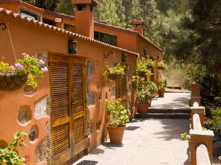 Holiday cottage in Firgas (GC0022) - Pozo Negro vacation rentals