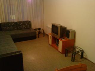 BELGRADE FLAT 18EUR/DAY RENT1ST(email: hidden) - Belgrade vacation rentals