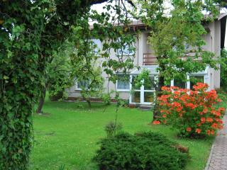 3B Apartment Borek98 - Hluboka nad Vltavou vacation rentals
