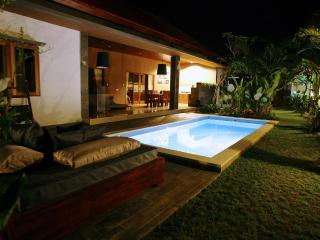 Luxury Villa Divinka, close to the beach, pool, garden - Bali vacation rentals