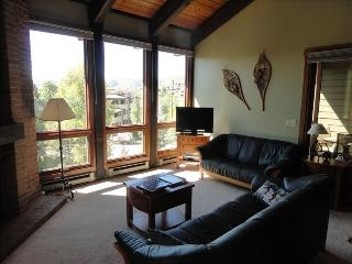 Walking distance to Gondola. Great views - Steamboat Springs vacation rentals