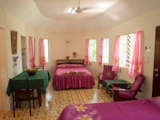 5 bedroom B&B with Internet Access in Apia - Apia vacation rentals