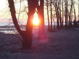 the Cottage at Seacliff Beach...best lakeview in town! - Leamington vacation rentals