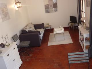 Charming apartment in the heart of l'Isle sur la Sorgue - L'Isle-sur-la-Sorgue vacation rentals