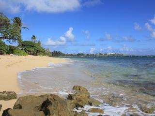 Large Ocean View Studio with Private Beach Access - Oahu vacation rentals