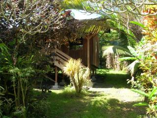 Lovely House with Deck and Internet Access - Pahoa vacation rentals