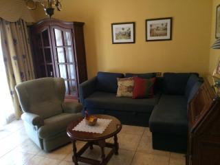 Holiday apartmet in Los Cristianos quiet área 100 - San Fernando de Henares vacation rentals