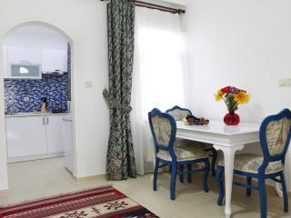 Sultanahmet, Akbiyik District, 3 BR, Deluxe Apt - Turkey vacation rentals