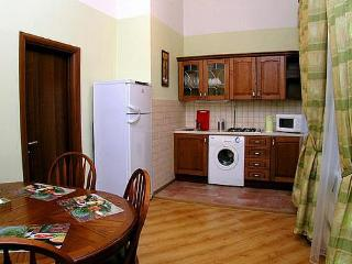 Nice 1 bedroom Condo in Moscow - Moscow vacation rentals