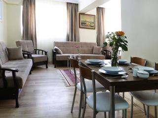 Sultanahmet - Istanbul, 2 BR Apt, 80 Sqm, GRFL - Istanbul vacation rentals