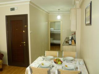 Sultanahmet - Istanbul, Hagia Irene Apartment - Turkey vacation rentals
