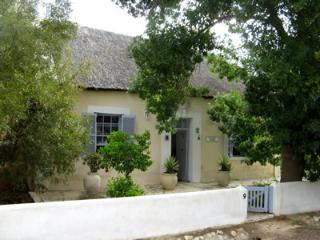 Sunflower Cottage - Greyton vacation rentals