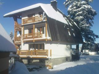 Charming 2 bedroom Condo in Jahorina with Internet Access - Jahorina vacation rentals