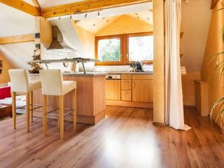 Holiday apartment in Offenburg - Offenburg vacation rentals