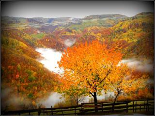 Casa Roger in Transylvania - Transylvania vacation rentals