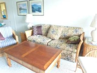 Spacious Living Room with Queen Sleeper - BIG SALE   Luxury Ocean Tropical Royal Sea Cliff - Kailua-Kona - rentals