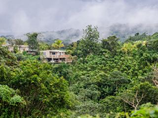 Casa Flor - Mountain Top (1-9) - Puerto Rico vacation rentals