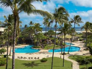 Ocean Front Property $99 Mountain View Studio Room - Lihue vacation rentals