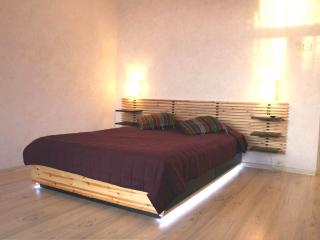 Spacy  apartment  near Moscow State University - Cabarete vacation rentals