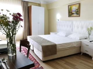 Sultanahmet - Large Studio Apt, 30 Sqm, 2nd FL - Istanbul vacation rentals