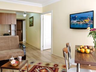 Sultanahmet - Istanbul, 2 BR Apt, 75 Sqm, 1st FL - Istanbul vacation rentals