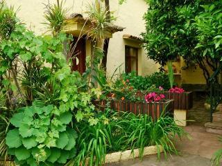 Casa de Tío Félix - Utiaca vacation rentals