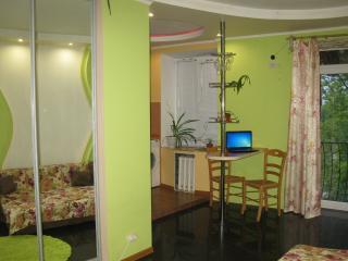 Boryspil Airport Business Apartments - Boryspil vacation rentals