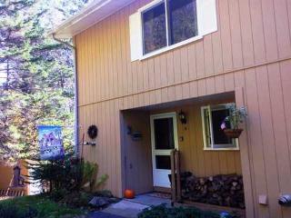 Fox Hill Condo 31 - Stowe vacation rentals