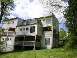Cozy Stowe House rental with Internet Access - Stowe vacation rentals
