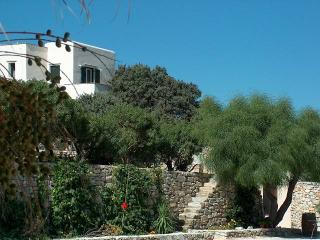 One bedroom villa with two bathrooms - Agios Prokopios vacation rentals