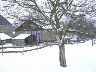 Dry Le Nou Menatje   Gîte Rural  3 épis     Dochamps  ( Manhay ) - Amonines vacation rentals