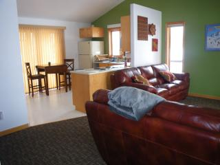 Wonderful Condo with Deck and Internet Access - Driggs vacation rentals
