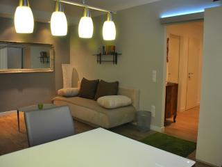bluedanube apartments - Vienna vacation rentals