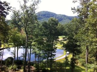 Gorgeous Cabin with Deck and Internet Access - Sapphire vacation rentals