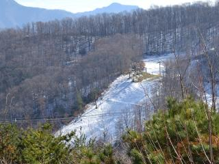 FANTASTIC VIEWS OF OBER GATLINGBURG SKIING*CLEAN*RELAXING*BREATHTAKING*TRANQUIL - Gatlinburg vacation rentals