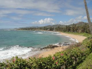 Oceanfront Condo in Kapaa! - Kapaa vacation rentals