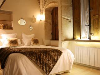 LA SUITE DU GOUVERNEUR - Old LYON - Lyon vacation rentals
