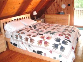 Beautiful and Secluded Whiteface Mountain Chalet - Jay vacation rentals