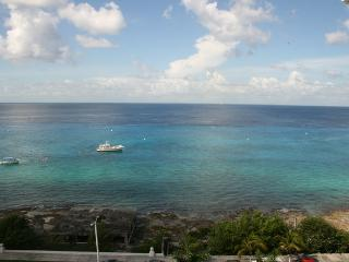 New 2 Bdrm, Penthouse in Palmar, Pool, Gym! - Cozumel vacation rentals