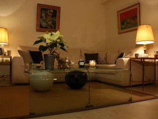 (80m²) Luxury and Spacious appartment - Paris vacation rentals
