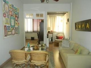EXCELLENT 1BR IN IPANEMA, UP TO 4 PEOPLE! - Rio de Janeiro vacation rentals