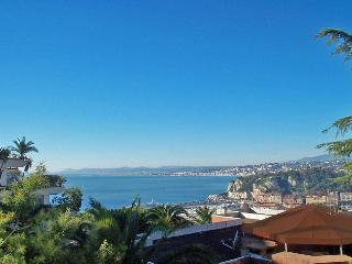 Nice - 1-bed aptment - parking, great view, garden - Nice vacation rentals