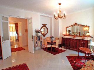 Nice central, spacious, elegant, gracious, 2bdrms - Nice vacation rentals