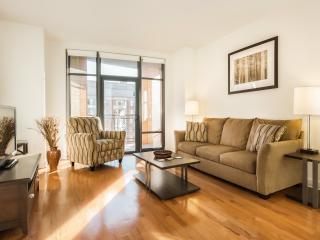 Washington DC- 2 Bedroom / 2 Bath Luxury Apartment - Washington DC vacation rentals