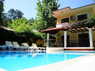 Villa Dolphin, Private Villa with pool, quite loca - Gocek vacation rentals