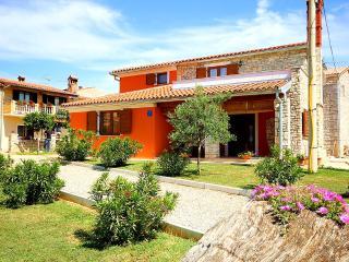 Beautiful Modern Villa in Rural Istria - Vodnjan vacation rentals